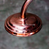 Copper rose R650