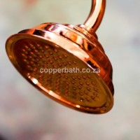 Copper rose 170 mm R680